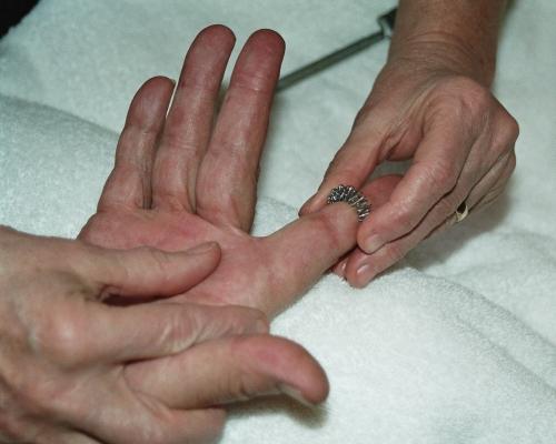 Die Hetero-Homo-Systematik spielt in der Su Jok-Therapie eine grundlegende Rolle.